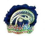 Hat of Black Panji